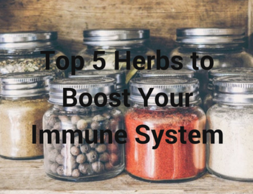 Top 5 Herbs to Boost Your Immune System