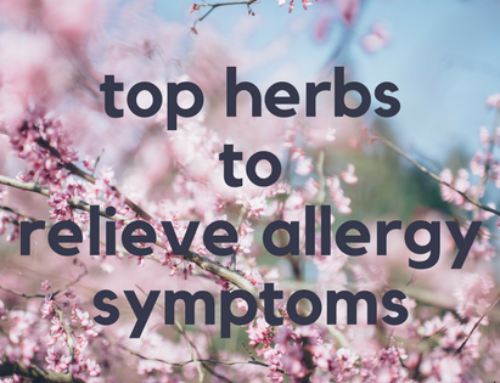 Top 5 Herbs to Relieve Allergy Symptoms